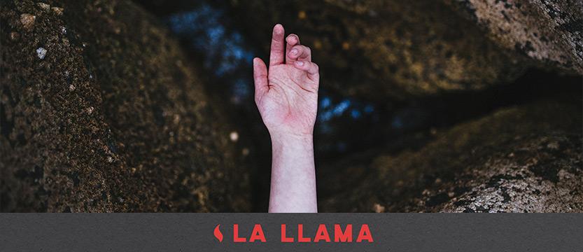 llama-24062017