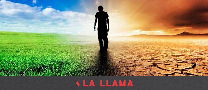 llama-30062017