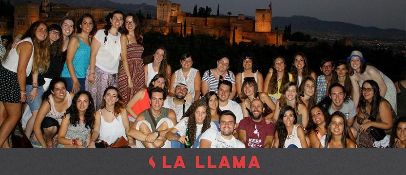 llama-15072017_1